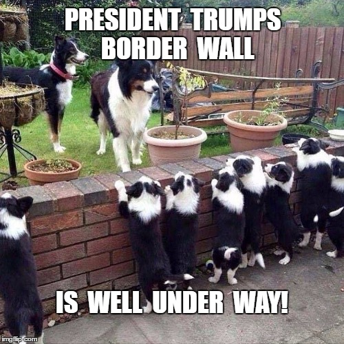 Border Wall | PRESIDENT  TRUMPS  BORDER  WALL IS  WELL  UNDER  WAY! | image tagged in trump,wall | made w/ Imgflip meme maker