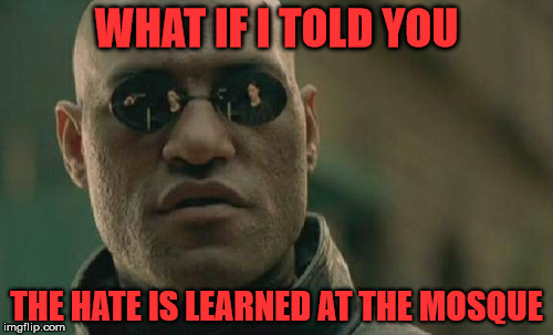 and not the internet | WHAT IF I TOLD YOU THE HATE IS LEARNED AT THE MOSQUE | image tagged in matrix morpheus,islam,terrorism | made w/ Imgflip meme maker