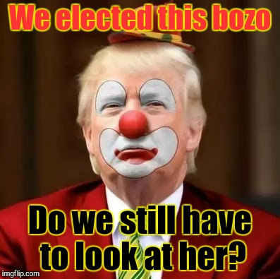 We elected this bozo Do we still have to look at her? | made w/ Imgflip meme maker