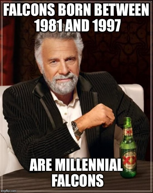 The Most Interesting Man In The World Meme | FALCONS BORN BETWEEN 1981 AND 1997 ARE MILLENNIAL FALCONS | image tagged in memes,the most interesting man in the world | made w/ Imgflip meme maker