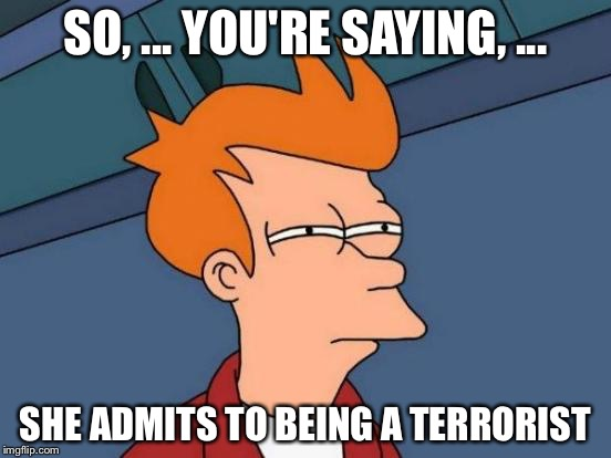 Futurama Fry Meme | SO, ... YOU'RE SAYING, ... SHE ADMITS TO BEING A TERRORIST | image tagged in memes,futurama fry | made w/ Imgflip meme maker