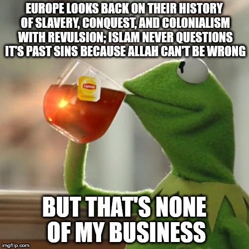 But Thats None Of My Business Meme | EUROPE LOOKS BACK ON THEIR HISTORY OF SLAVERY, CONQUEST, AND COLONIALISM WITH REVULSION; ISLAM NEVER QUESTIONS IT'S PAST SINS BECAUSE ALLAH  | image tagged in memes,but thats none of my business,kermit the frog | made w/ Imgflip meme maker