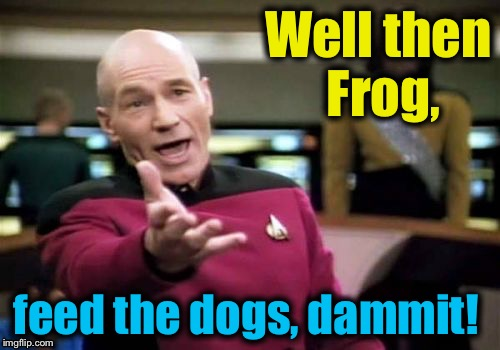 Picard Wtf Meme | Well then Frog, feed the dogs, dammit! | image tagged in memes,picard wtf | made w/ Imgflip meme maker