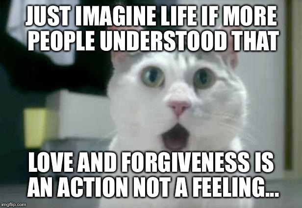 OMG Cat Meme | JUST IMAGINE LIFE IF MORE PEOPLE UNDERSTOOD THAT LOVE AND FORGIVENESS IS AN ACTION NOT A FEELING... | image tagged in memes,omg cat | made w/ Imgflip meme maker