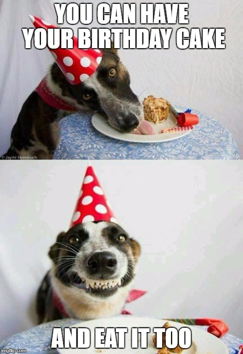 Can Puppies Eat Cake