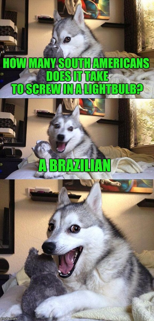 Bad Pun Dog Meme | HOW MANY SOUTH AMERICANS DOES IT TAKE TO SCREW IN A LIGHTBULB? A BRAZILIAN | image tagged in memes,bad pun dog | made w/ Imgflip meme maker