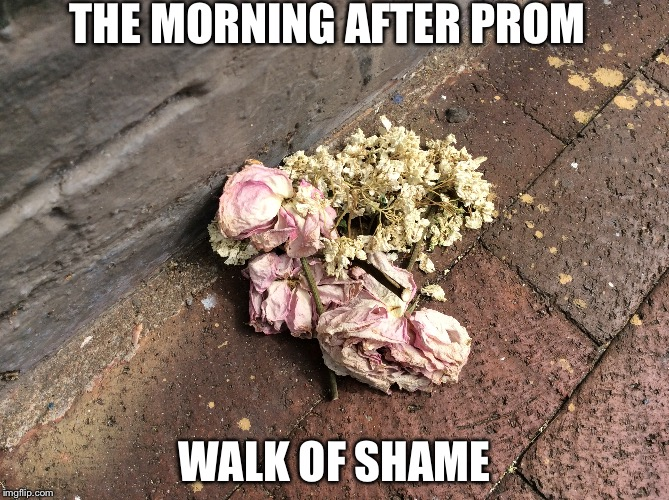 Morning after prom walk of shame | THE MORNING AFTER PROM WALK OF SHAME | image tagged in bouquet,tired | made w/ Imgflip meme maker