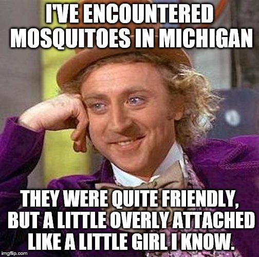 Creepy Condescending Wonka Meme | I'VE ENCOUNTERED MOSQUITOES IN MICHIGAN THEY WERE QUITE FRIENDLY, BUT A LITTLE OVERLY ATTACHED LIKE A LITTLE GIRL I KNOW. | image tagged in memes,creepy condescending wonka,mosquitoes | made w/ Imgflip meme maker