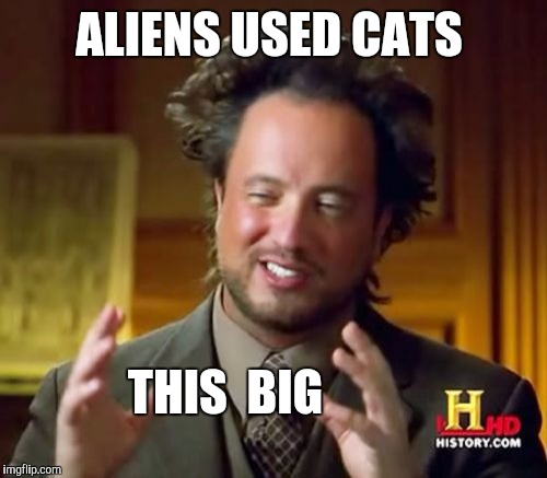 Ancient Aliens Meme | ALIENS USED CATS THIS  BIG | image tagged in memes,ancient aliens | made w/ Imgflip meme maker