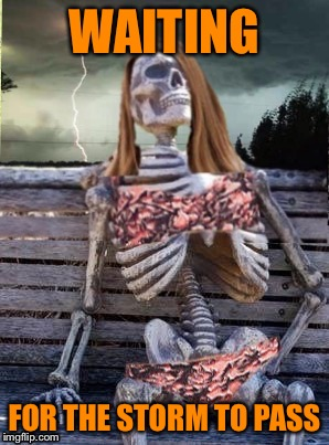 Waiting skeleton storm | WAITING FOR THE STORM TO PASS | image tagged in waiting skeleton storm | made w/ Imgflip meme maker