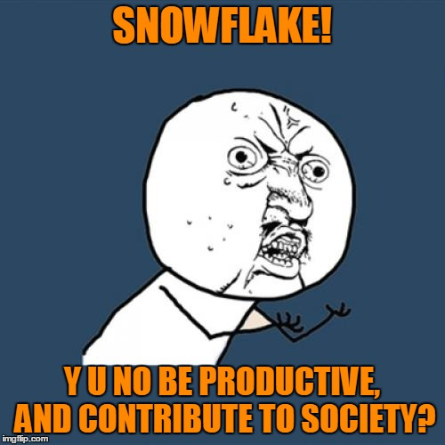 Y U No Meme | SNOWFLAKE! Y U NO BE PRODUCTIVE, AND CONTRIBUTE TO SOCIETY? | image tagged in memes,y u no | made w/ Imgflip meme maker