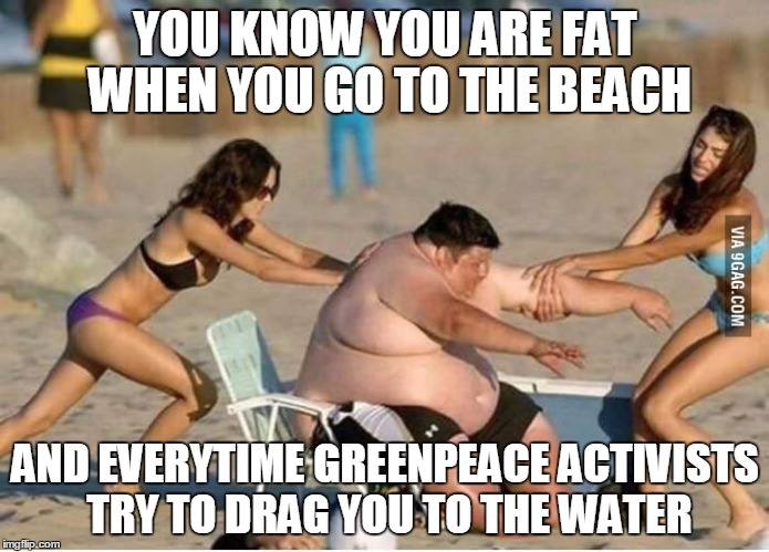 Greenpeace rescue | YOU KNOW YOU ARE FAT WHEN YOU GO TO THE BEACH AND EVERYTIME GREENPEACE ACTIVISTS TRY TO DRAG YOU TO THE WATER | image tagged in greenpeace rescue | made w/ Imgflip meme maker