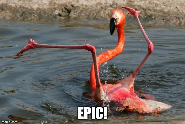 EPIC! | made w/ Imgflip meme maker
