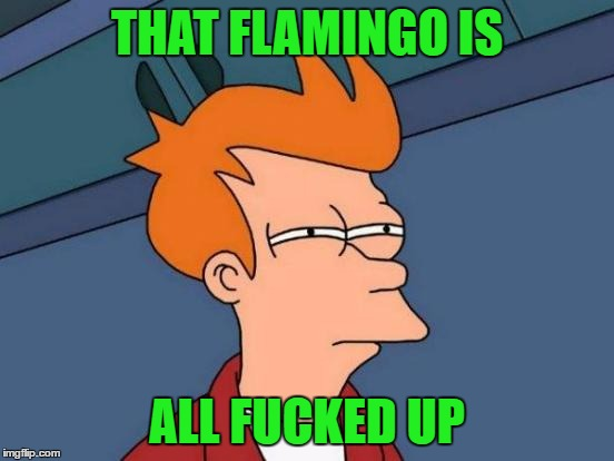 Futurama Fry Meme | THAT FLAMINGO IS ALL F**KED UP | image tagged in memes,futurama fry | made w/ Imgflip meme maker