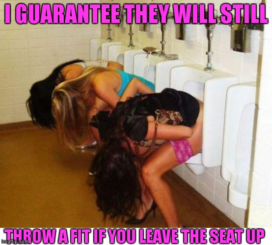 Tell me I'm wrong... | I GUARANTEE THEY WILL STILL THROW A FIT IF YOU LEAVE THE SEAT UP | image tagged in bathroom humor | made w/ Imgflip meme maker