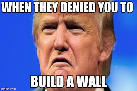 Donald trump crying |  WHEN THEY DENIED YOU TO; BUILD A WALL | image tagged in donald trump crying | made w/ Imgflip meme maker