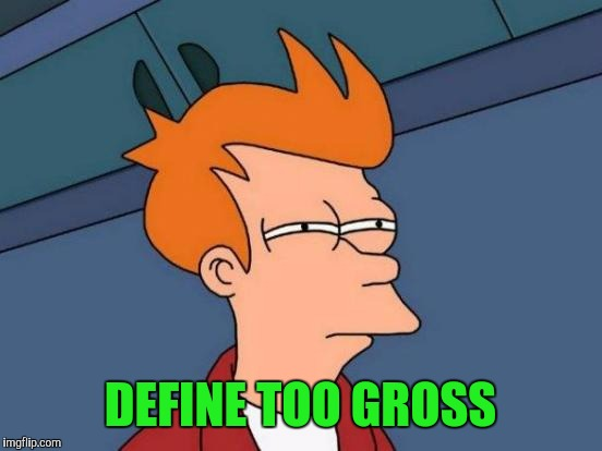 Futurama Fry Meme | DEFINE TOO GROSS | image tagged in memes,futurama fry | made w/ Imgflip meme maker