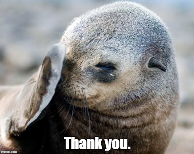633141...93a.jpg | Thank you. | image tagged in 63314193ajpg | made w/ Imgflip meme maker