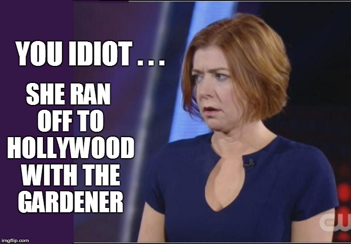 YOU IDIOT . . . SHE RAN OFF TO HOLLYWOOD WITH THE GARDENER | made w/ Imgflip meme maker