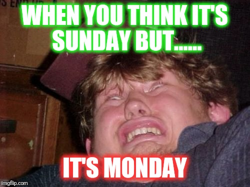 WTF |  WHEN YOU THINK IT'S SUNDAY BUT...... IT'S MONDAY | image tagged in memes,wtf | made w/ Imgflip meme maker