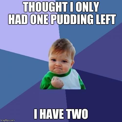Success Kid Meme | THOUGHT I ONLY HAD ONE PUDDING LEFT I HAVE TWO | image tagged in memes,success kid | made w/ Imgflip meme maker