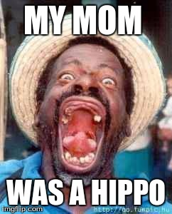 Funny no tooth | MY MOM WAS A HIPPO | image tagged in funny no tooth | made w/ Imgflip meme maker
