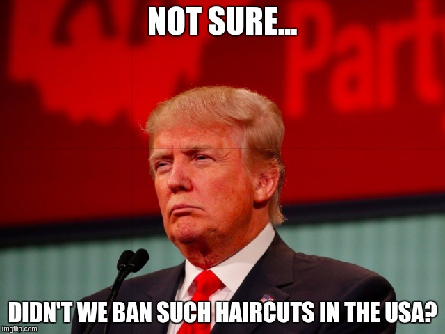 Liberal Haircuts | NOT SURE... DIDN'T WE BAN SUCH HAIRCUTS IN THE USA? | image tagged in not sure,memes,funny,hair,trump | made w/ Imgflip meme maker