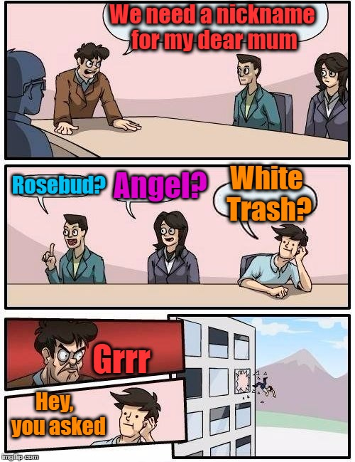 Apparently honesty isn't always the best policy | We need a nickname for my dear mum Rosebud? Angel? White Trash? Grrr Hey,  you asked | image tagged in memes,boardroom meeting suggestion | made w/ Imgflip meme maker