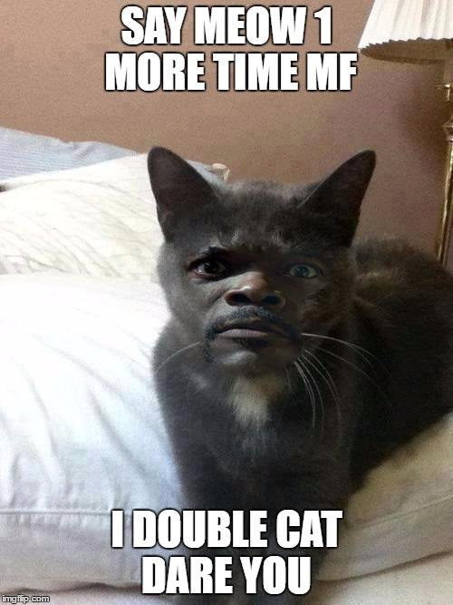 Say meow again |  SAY MEOW 1 MORE TIME MF; I DOUBLE CAT DARE YOU | image tagged in samuel l catson,cats,funny,meme | made w/ Imgflip meme maker