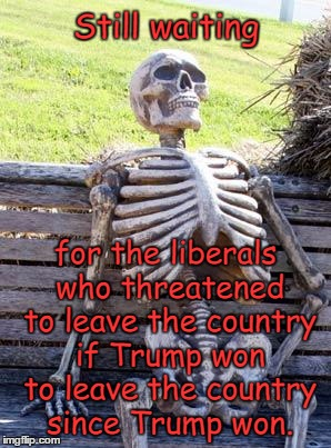Waiting Skeleton Meme | Still waiting for the liberals who threatened to leave the country if Trump won to leave the country since Trump won. | image tagged in memes,waiting skeleton,donald trump | made w/ Imgflip meme maker
