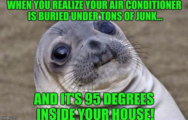 Awkward Moment Sealion Meme | WHEN YOU REALIZE YOUR AIR CONDITIONER IS BURIED UNDER TONS OF JUNK... AND IT'S 95 DEGREES INSIDE YOUR HOUSE! | image tagged in memes,awkward moment sealion | made w/ Imgflip meme maker