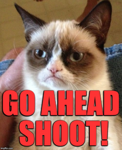 Grumpy Cat Meme | GO AHEAD SHOOT! | image tagged in memes,grumpy cat | made w/ Imgflip meme maker