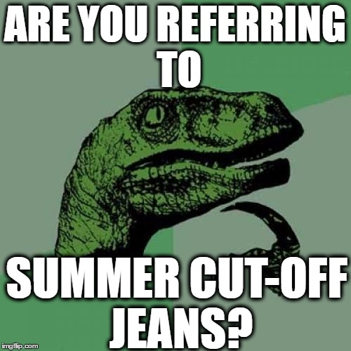 Philosoraptor Meme | ARE YOU REFERRING TO SUMMER CUT-OFF JEANS? | image tagged in memes,philosoraptor | made w/ Imgflip meme maker