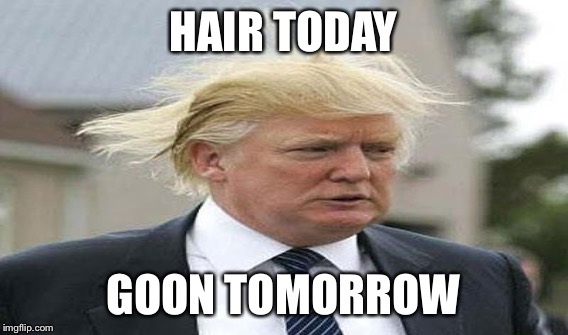 HAIR TODAY GOON TOMORROW | made w/ Imgflip meme maker