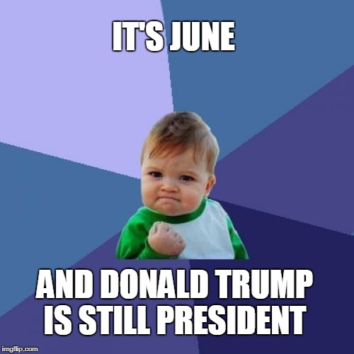 DESPITE ALL THE WEEPING AND GNASHING OF TEETH | IT'S JUNE AND DONALD TRUMP IS STILL PRESIDENT | image tagged in memes,success kid,donald trump,trump president | made w/ Imgflip meme maker