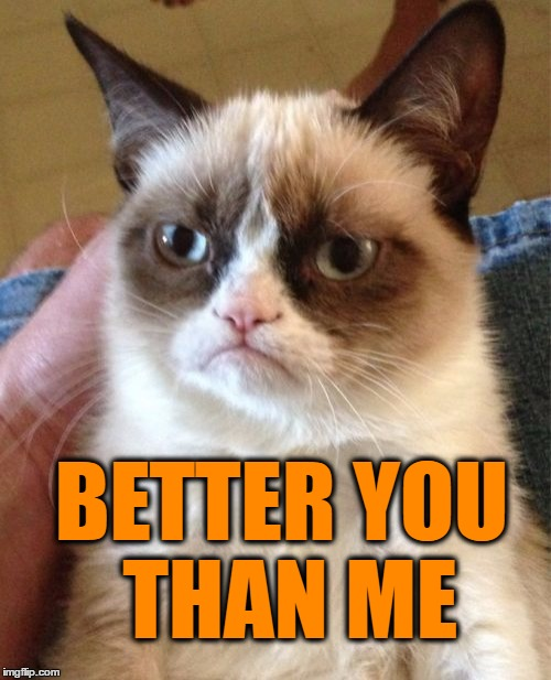 Grumpy Cat Meme | BETTER YOU THAN ME | image tagged in memes,grumpy cat | made w/ Imgflip meme maker