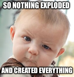 Skeptical Baby Meme | SO NOTHING EXPLODED AND CREATED EVERYTHING | image tagged in memes,skeptical baby | made w/ Imgflip meme maker