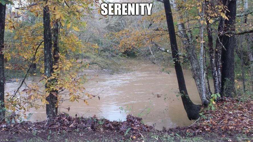 SERENITY | image tagged in flooded creek | made w/ Imgflip meme maker
