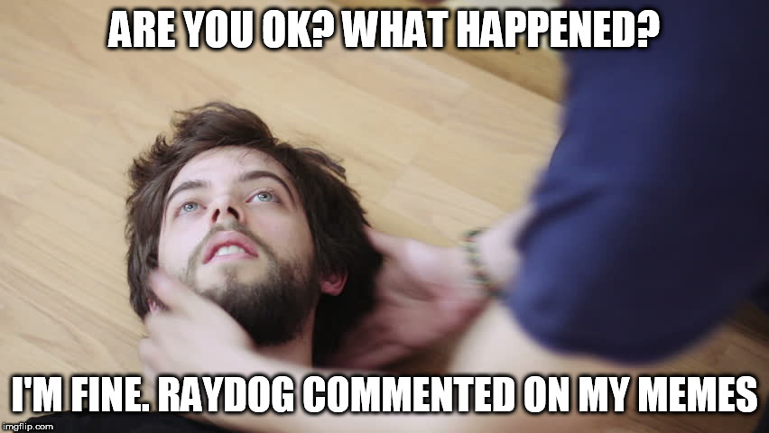 ARE YOU OK? WHAT HAPPENED? I'M FINE. RAYDOG COMMENTED ON MY MEMES | made w/ Imgflip meme maker