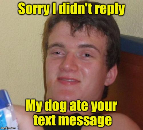 10 Guy Meme | Sorry I didn't reply My dog ate your text message | image tagged in memes,10 guy | made w/ Imgflip meme maker