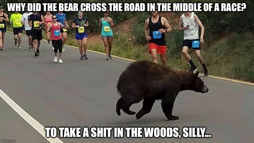 I don't have to be fast...I just have to be faster than you | WHY DID THE BEAR CROSS THE ROAD IN THE MIDDLE OF A RACE? TO TAKE A SHIT IN THE WOODS, SILLY... | image tagged in bear,race,shit,woods | made w/ Imgflip meme maker