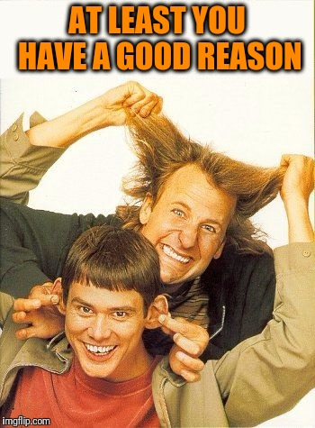 DUMB and dumber | AT LEAST YOU HAVE A GOOD REASON | image tagged in dumb and dumber | made w/ Imgflip meme maker