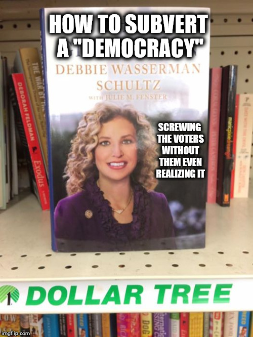 "How To.. |  HOW TO SUBVERT A ""DEMOCRACY""; SCREWING THE VOTERS WITHOUT THEM EVEN REALIZING IT 