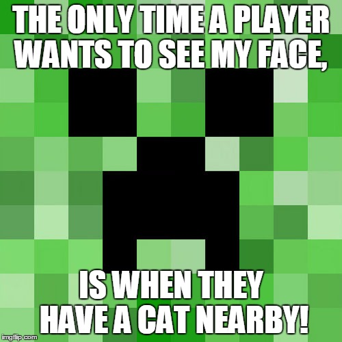 Scumbag Minecraft | THE ONLY TIME A PLAYER WANTS TO SEE MY FACE, IS WHEN THEY HAVE A CAT NEARBY! | image tagged in memes,scumbag minecraft | made w/ Imgflip meme maker
