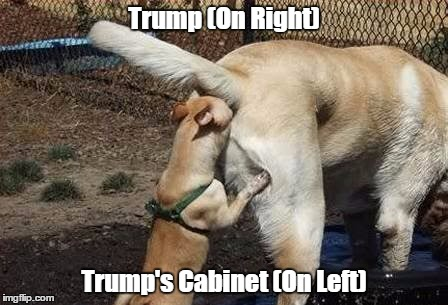 Trump (On Right) Trump's Cabinet (On Left) | made w/ Imgflip meme maker