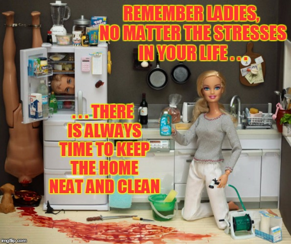 someone was busy and forgot to take their Risperdal again... | REMEMBER LADIES, NO MATTER THE STRESSES IN YOUR LIFE . . . . . . THERE IS ALWAYS TIME TO KEEP THE HOME NEAT AND CLEAN | image tagged in memes,barbie meme week,barbie | made w/ Imgflip meme maker
