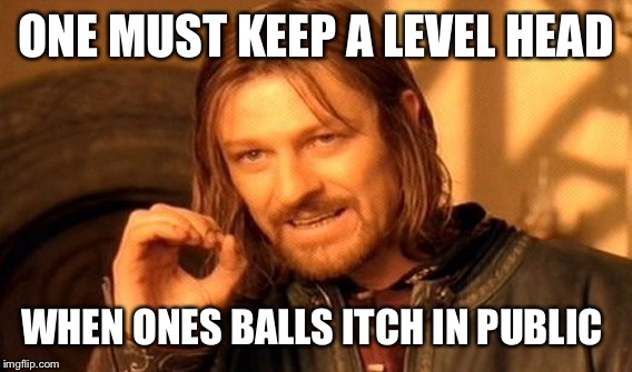 One Does Not Simply Meme | ONE MUST KEEP A LEVEL HEAD WHEN ONES BALLS ITCH IN PUBLIC | image tagged in memes,one does not simply | made w/ Imgflip meme maker
