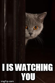 I IS WATCHING YOU | made w/ Imgflip meme maker
