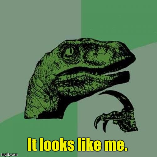Philosoraptor Meme | It looks like me. | image tagged in memes,philosoraptor | made w/ Imgflip meme maker