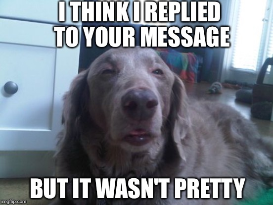 I THINK I REPLIED TO YOUR MESSAGE BUT IT WASN'T PRETTY | made w/ Imgflip meme maker